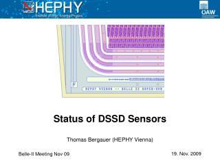 Status of DSSD Sensors