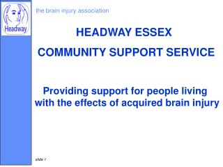 the brain injury association