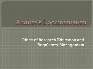 Auditor's Documentation