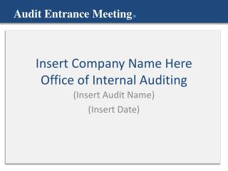 Insert Company Name Here Office of Internal Auditing