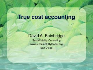True cost accounting