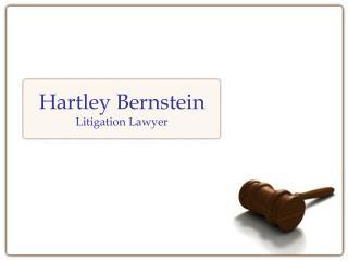 Hartley Bernstein And Litigation Support