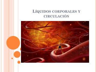 Líquidos corporales y circulación