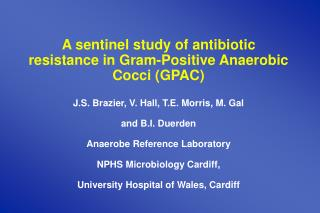 A sentinel study of antibiotic resistance in Gram-Positive Anaerobic Cocci GPAC