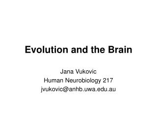Evolution and the Brain