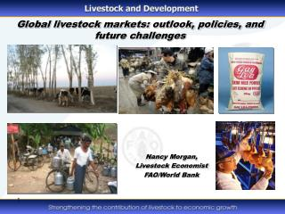 Global livestock markets: outlook, policies, and future challenges