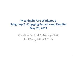 Meaningful Use Workgroup Subgroup 2 - Engaging Patients and Families May 29, 2013