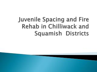 Juvenile Spacing and Fire Rehab in Chilliwack and Squamish  Districts