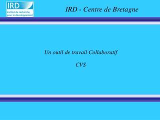 Un outil de travail Collaboratif CVS