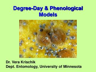 Degree-Day & Phenological Models