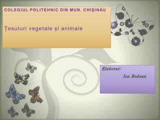 COLEGIUL POLITEHNIC DIN MUN. CHIȘINĂU Țesuturi vegetale și animale