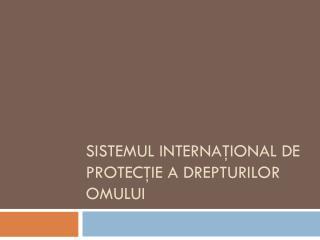 Sistemul internaţional de protecţie a drepturilor omului