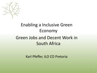 Enabling a Inclusive Green Economy Green Jobs and Decent Work in South Africa