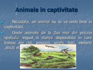 Animale in captivitate