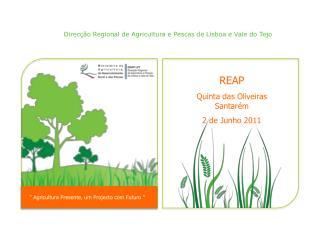 REAP Quinta das Oliveiras Santarém  2 de Junho 2011