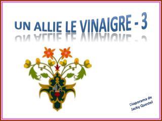 UN ALLIE LE VINAIGRE - 3