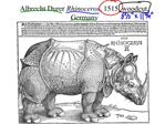 Albrecht Durer Rhinoceros, 1515, woodcut, Germany