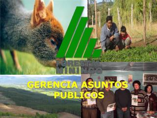 GERENCIA ASUNTOS  PUBLICOS