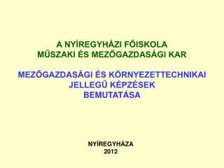 NYÍREGYHÁZA 2012