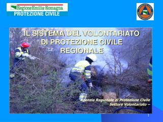 IL SISTEMA  DEL  VOLONTARIATO DI PROTEZIONE CIVILE REGIONALE