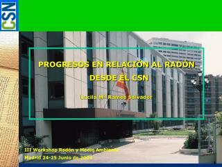 PROGRESOS EN RELACIÓN AL RADÓN   DESDE EL CSN Lucila Mª Ramos Salvador