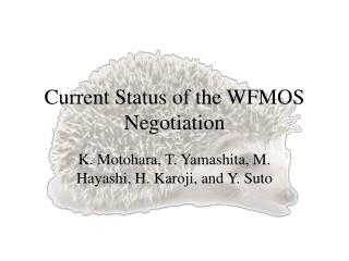 Current Status of the WFMOS Negotiation