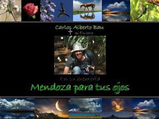 Carlos Alberto Bau