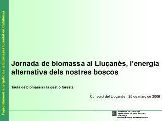 Jornada de biomassa al Lluçanès, l'energia alternativa dels nostres boscos