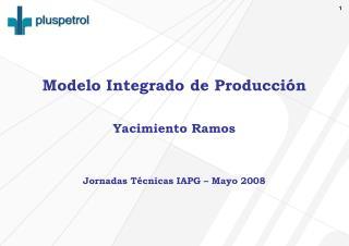 Modelo Integrado de Producción Yacimiento Ramos Jornadas Técnicas IAPG – Mayo 2008