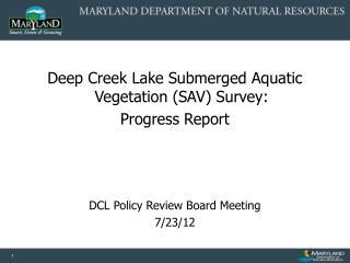 Deep Creek Lake Submerged Aquatic Vegetation (SAV) Survey:   Progress Report