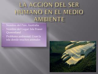 La  acción  del ser humano en el  medio  ambiente