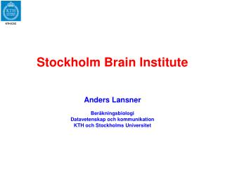 Stockholm Brain Institute