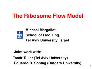 The Ribosome Flow Model