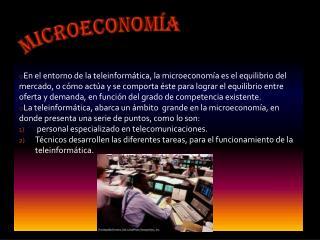 Microeconom�a