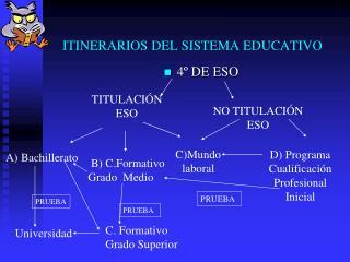 ITINERARIOS DEL SISTEMA EDUCATIVO