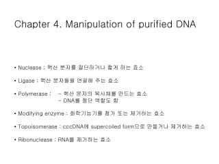 Chapter 4. Manipulation of purified DNA •  Nuclease ;  핵산 분자를 절단하거나 짧게 하는 효소