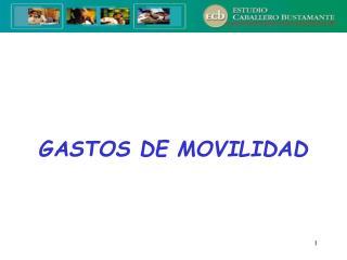 GASTOS DE MOVILIDAD