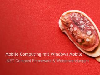 Mobile Computing mit Windows Mobile