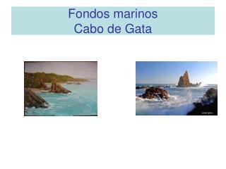Fondos marinos  Cabo de Gata