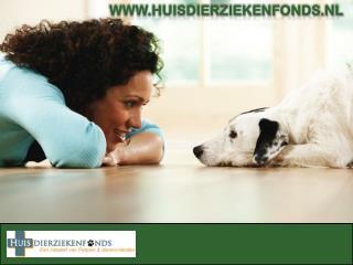 HuisDierziekenfonds.nl