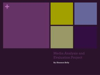 Media Analysis and Evaluation Project