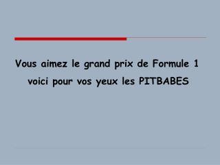 Vous aimez le grand prix de Formule 1    voici pour vos yeux les PITBABES