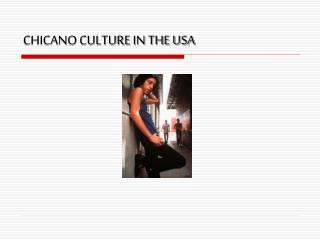 CHICANO CULTURE IN THE USA