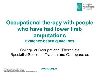 Occupational therapy with people who have had lower limb amputations Evidence-based guidelines