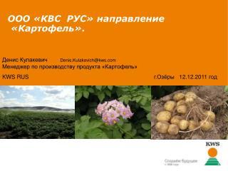 ООО «КВС  РУС» направление   «Картофель».
