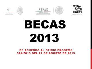 Becas 2013 A EMS