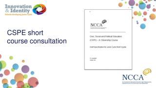 CSPE short course consultation