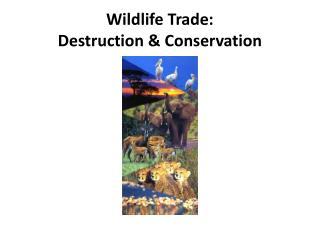 Wildlife Trade: Destruction & Conservation