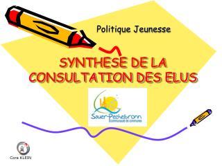SYNTHESE DE LA CONSULTATION DES ELUS