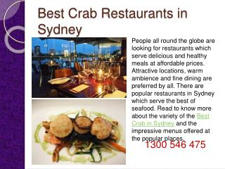 Best Crab Restaurants in Sydney